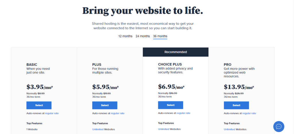 Hosting plan- online work from business